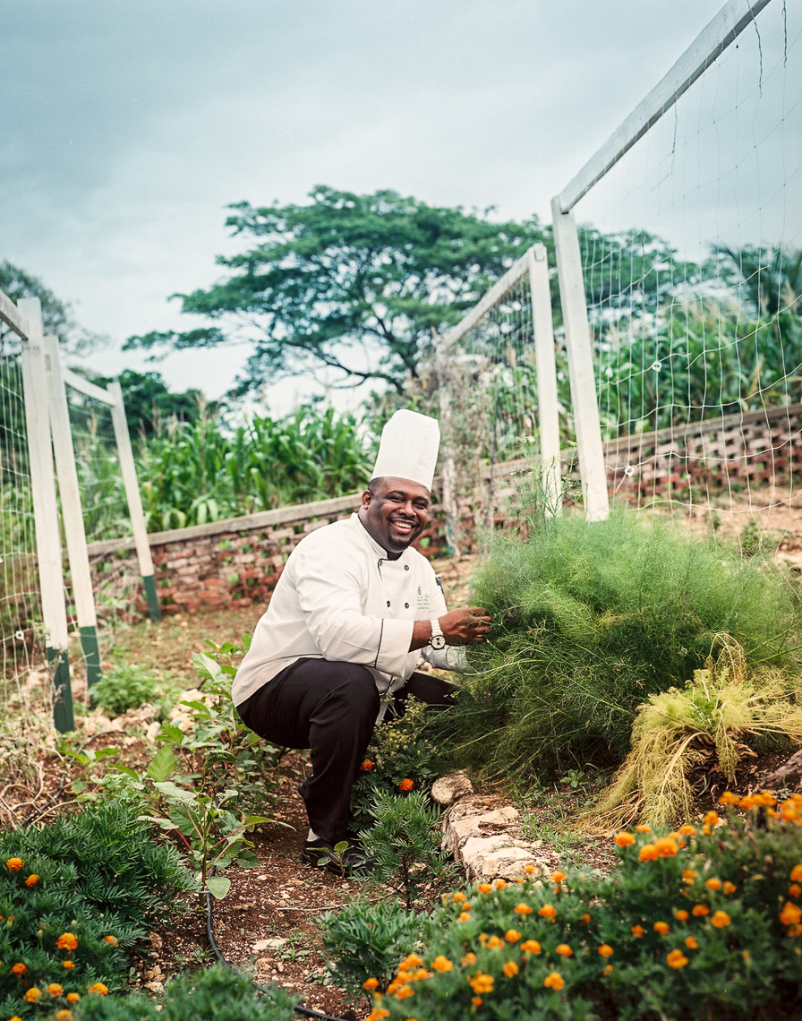 Chef in Jamaican Garden
